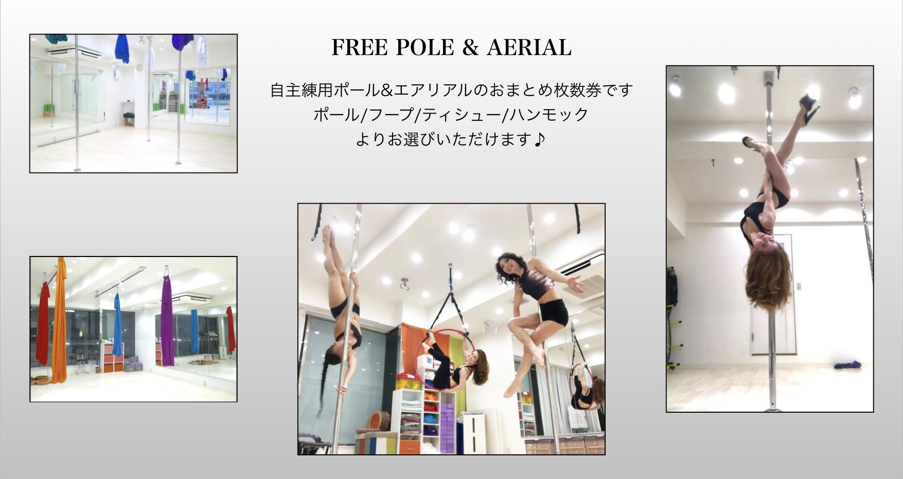 free-pole-aerial-kaisuuken