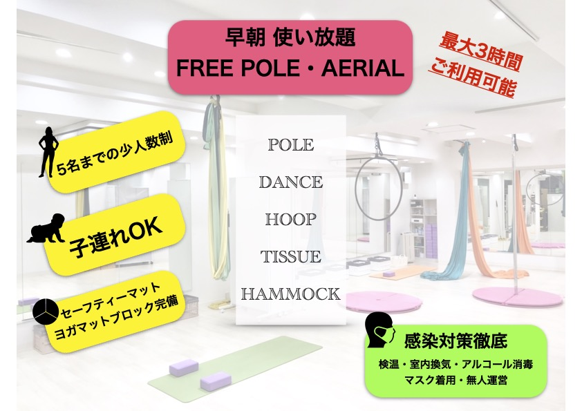 souchou free pole aerial